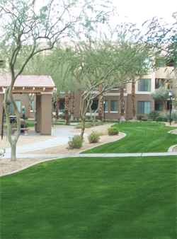 Commercial - GPM Landscaping